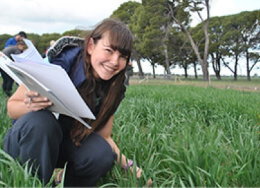 Diploma in Agronomy