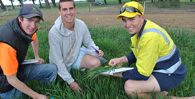 Three students on the farm at Longy College