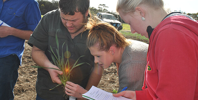 Students examining a crop at Longy College